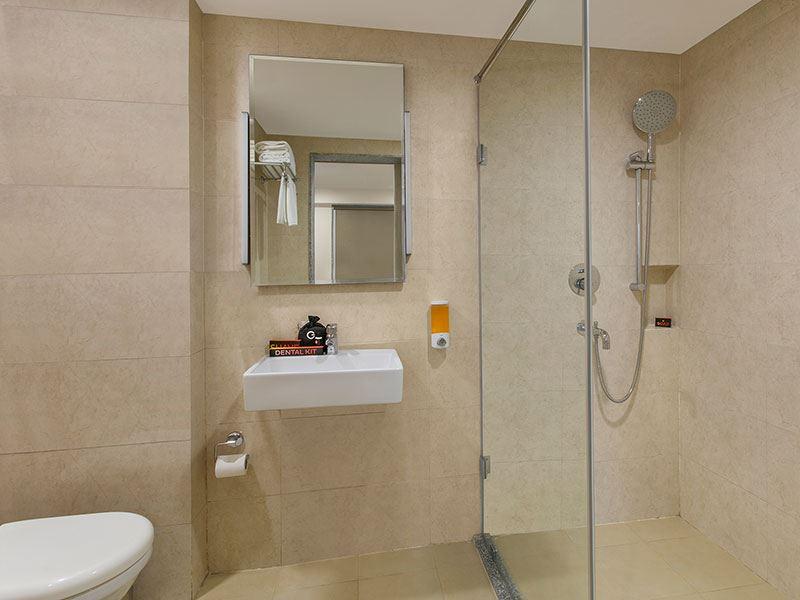 Ginger Patna Washroom