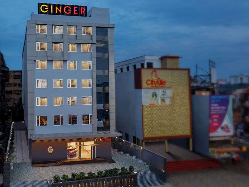 Ginger Patna