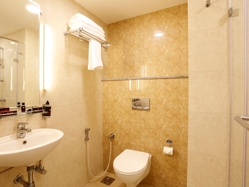 Ginger Sanand Washroom
