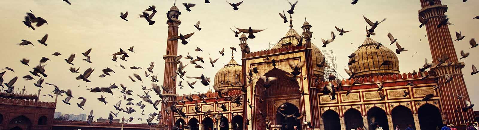 New Delhi In & Around
